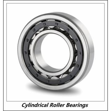 1.25 Inch | 31.75 Millimeter x 2.125 Inch | 53.975 Millimeter x 2.5 Inch | 63.5 Millimeter  CONSOLIDATED BEARING 97740  Cylindrical Roller Bearings