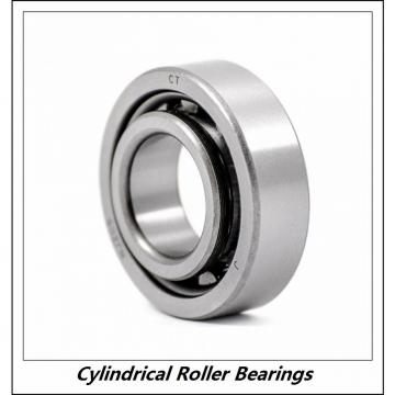 2.362 Inch | 60 Millimeter x 4.331 Inch | 110 Millimeter x 0.866 Inch | 22 Millimeter  CONSOLIDATED BEARING NU-212E  Cylindrical Roller Bearings
