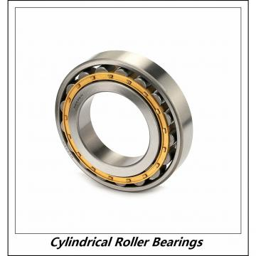 1.969 Inch | 50 Millimeter x 4.331 Inch | 110 Millimeter x 1.063 Inch | 27 Millimeter  CONSOLIDATED BEARING NUP-310E M C/3  Cylindrical Roller Bearings
