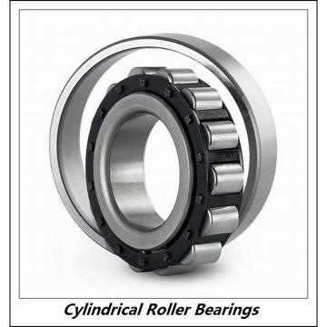 0.984 Inch | 25 Millimeter x 2.441 Inch | 62 Millimeter x 0.669 Inch | 17 Millimeter  CONSOLIDATED BEARING NUP-305  Cylindrical Roller Bearings
