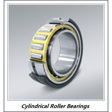 1.375 Inch | 34.925 Millimeter x 2 Inch | 50.8 Millimeter x 3 Inch | 76.2 Millimeter  CONSOLIDATED BEARING 95848  Cylindrical Roller Bearings