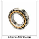 1.25 Inch | 31.75 Millimeter x 2.75 Inch | 69.85 Millimeter x 0.688 Inch | 17.475 Millimeter  RHP BEARING LRJ1.1/4J  Cylindrical Roller Bearings
