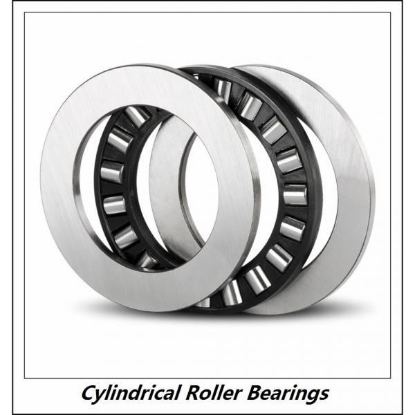 1.969 Inch | 50 Millimeter x 4.331 Inch | 110 Millimeter x 1.063 Inch | 27 Millimeter  CONSOLIDATED BEARING NUP-310E M C/3  Cylindrical Roller Bearings #5 image
