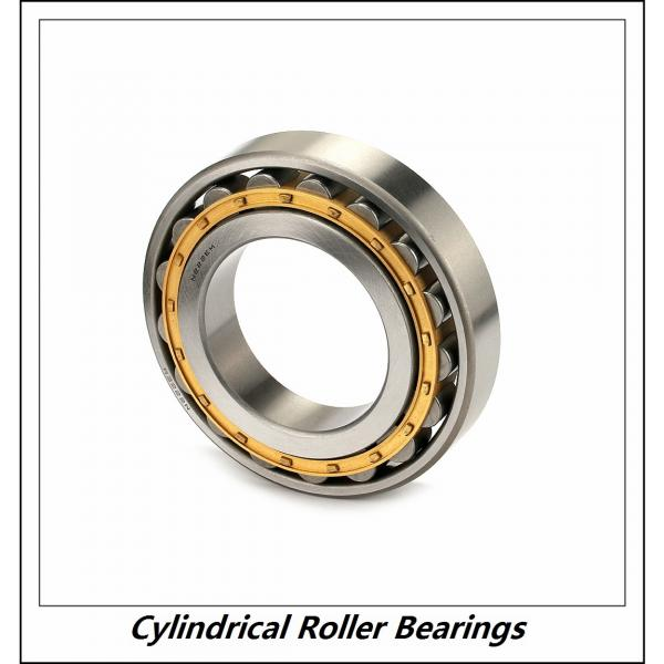 1.969 Inch | 50 Millimeter x 4.331 Inch | 110 Millimeter x 1.063 Inch | 27 Millimeter  CONSOLIDATED BEARING NUP-310E M C/3  Cylindrical Roller Bearings #4 image