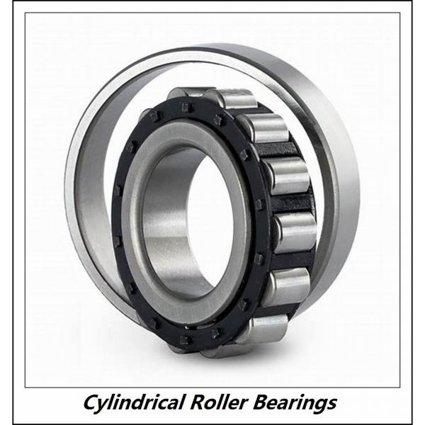 1.969 Inch | 50 Millimeter x 4.331 Inch | 110 Millimeter x 1.063 Inch | 27 Millimeter  CONSOLIDATED BEARING NUP-310E M C/3  Cylindrical Roller Bearings #3 image