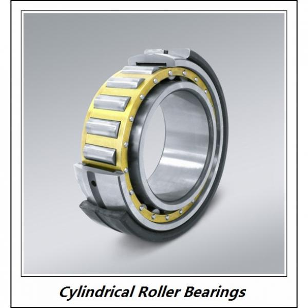 2.362 Inch | 60 Millimeter x 4.331 Inch | 110 Millimeter x 0.866 Inch | 22 Millimeter  CONSOLIDATED BEARING NU-212E M  Cylindrical Roller Bearings #1 image